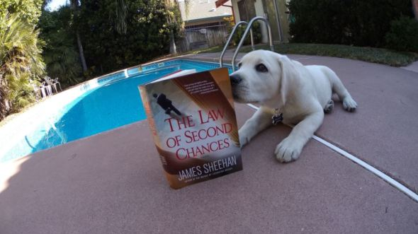 law of second chances featured