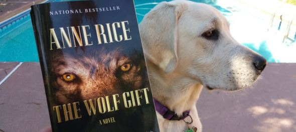 wolf gift 2