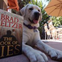 """The Book of Lies"" by Brad Meltzer"