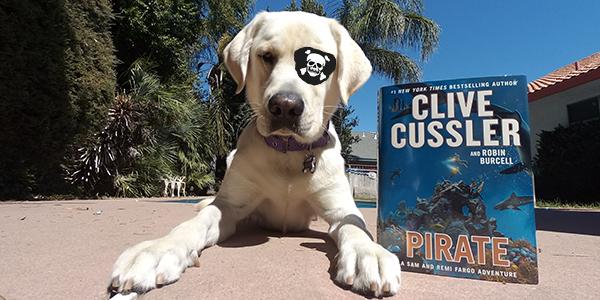 blaze-the-pirate