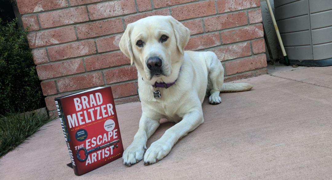 Blaze and the escape artist