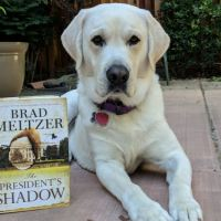 """""""The President's Shadow"""" by Brad Meltzer"""